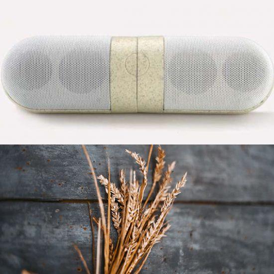 Wheat Straw Speaker